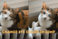 How to Change Eye Color in GIMP