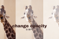 How to Change Opacity in GIMP