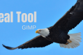 How to Use the Heal Tool in GIMP